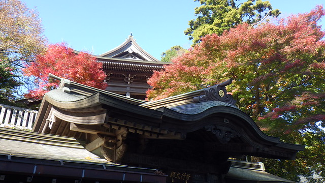 Yakuo-in 「高尾山薬王院」