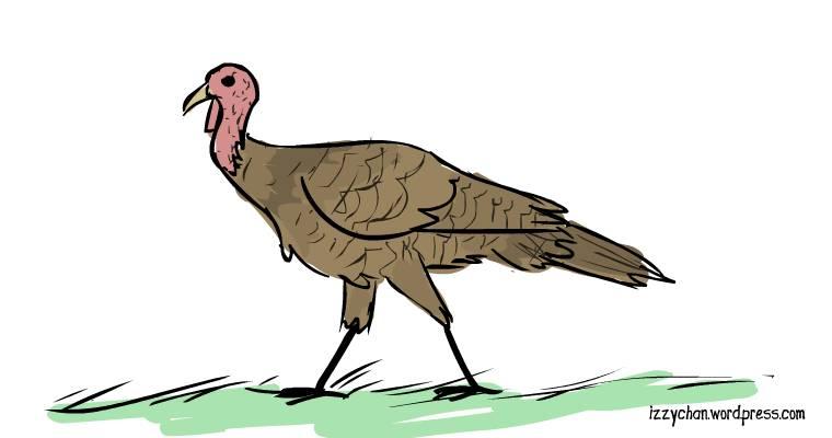 female turkey