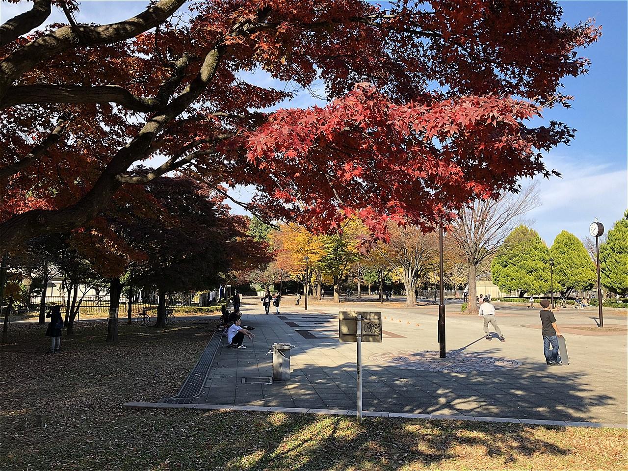 20171125_光が丘 (2)