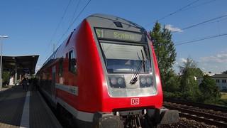 mein Reisegefährte nach Dresden fuhr der Zug mein Vis-ä-vis, Mann mit Begleiterinnen, die wollten, ich kenne die, ein Fettgespräch beginnen 01312
