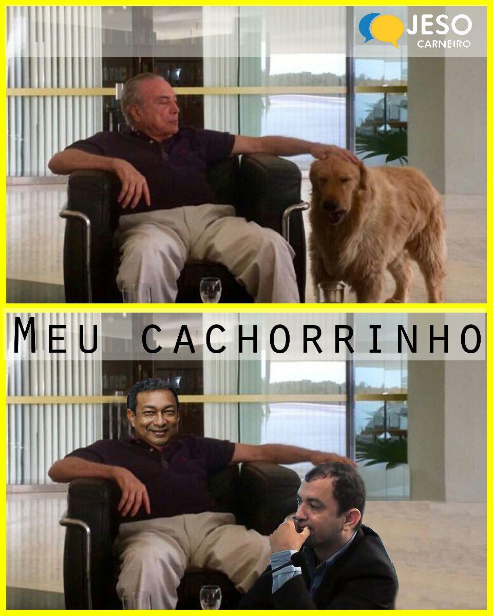 Humor. Pet líder do governo na Câmara de Óbidos