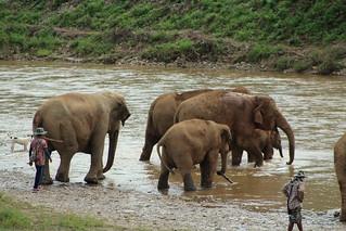 Family group at the river at ENP