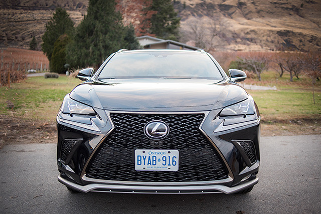 Lexus/photo by Janelle Photography