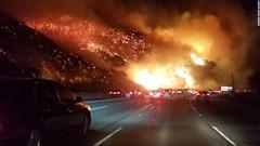 WildFire di Los Angeles dengan Ceramah Syafiq Riza Basalamah.mp4