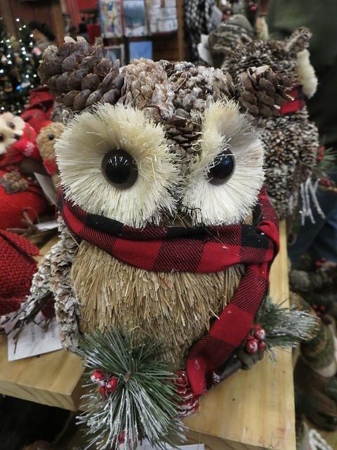 Pine Cone Owl.