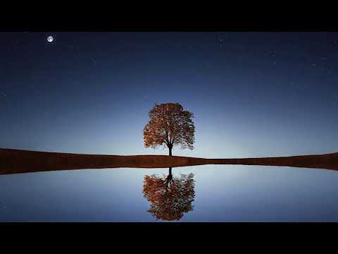 1 Hour Relaxing Indian Flute Music | Background Music For … | Flickr