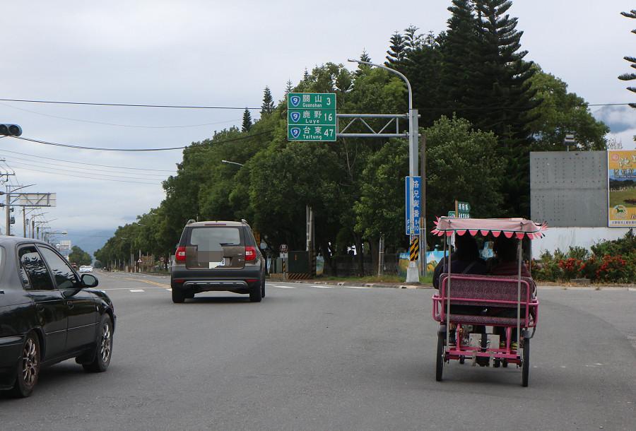台東池上還鄉自行車道24