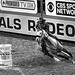 0246937386-95-Cowgirl Barrel Racing at the 2017 National Finals Rodeo-2-Black and White