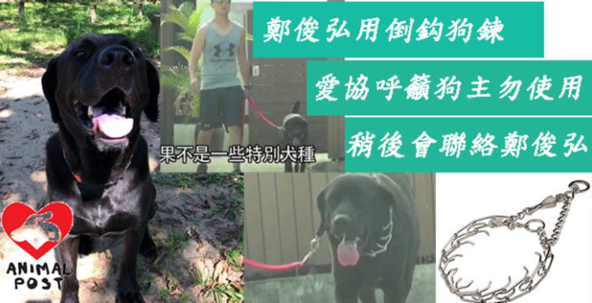 香港動物報製圖