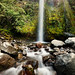 Dawson Falls in Egmont National Park by hsadura
