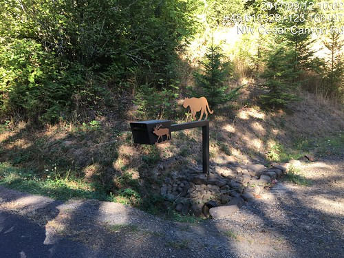 That's a pretty mailbox.  Cedar Canyon Rd, Beaverton - Hagg Lake - Carlton perm.