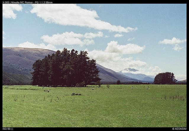 Marlborough farm land