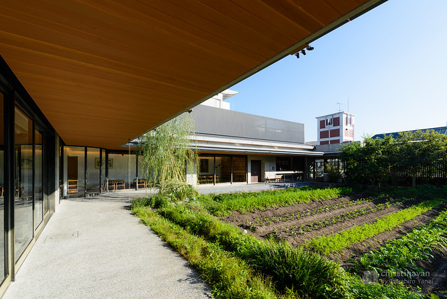 Farm on rooftop, Kyoto Yaoichi (京都八百一本館)