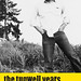The Tugwell Years, Selected letters by Barry Macleod by pjwoodland