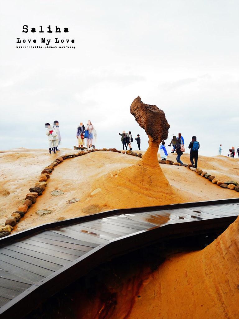 新北台北一日遊景點推薦野柳地質公園女王頭 (1)