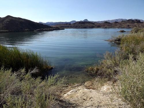 2017 arizona desert hiking lakehavasucity wash mockingbirdwash lake lakehavasu