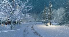 .. first snow ..