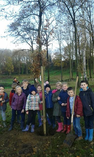 24 november - bomen planten (3de leerjaar)