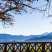 Morning view from terrace of Zhushan in Taiwan