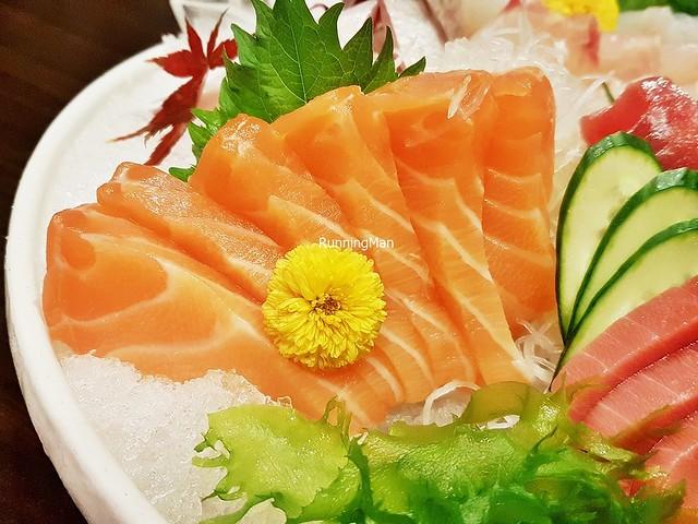 Shake / Salmon
