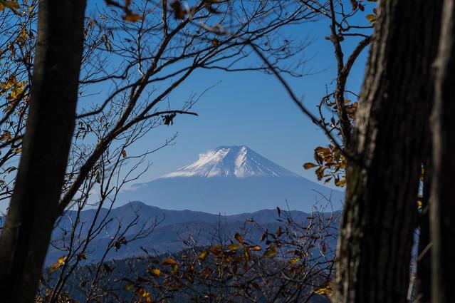 冠雪した富士山です