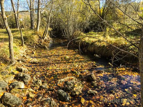 Río Santa Águeda, Segovia.