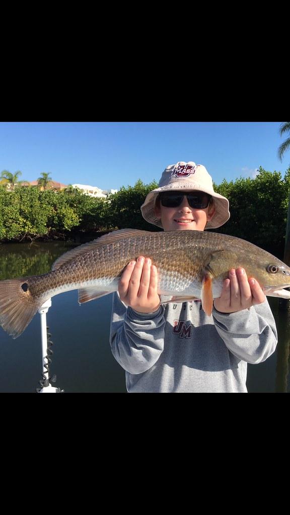 Redfish Tampa