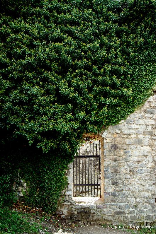 Стена Цитадели с дверью