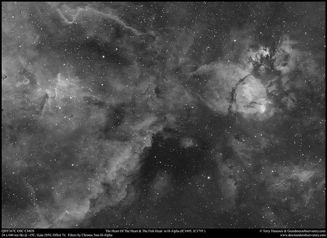 The Heart Of The Heart and Fish Head Nebulae in H-Alpha