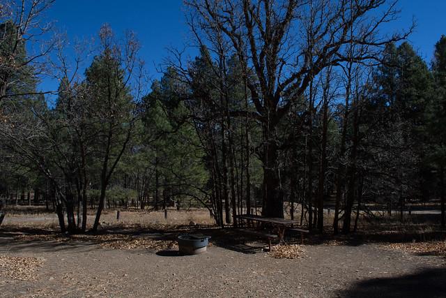 Camping: Dairy Springs