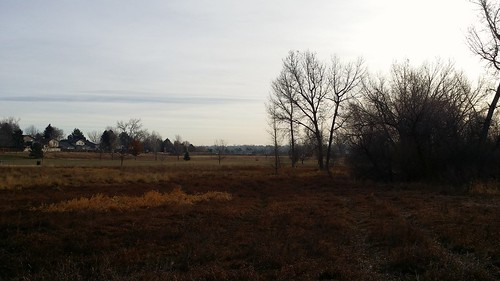 #tommw 36F mostly cloudy. Calm