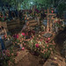 Dia los Muertos at Xoxocotlan cemetery, Oaxaca por David Clay Photography
