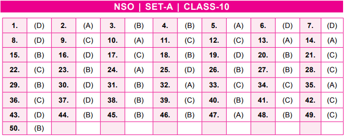 NSO Answer Keys Class 10