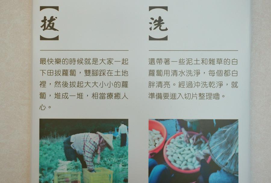 台東關山蘿蔔銀行06
