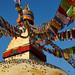 Pigeons taking sun on the Buddhist stupa of Boudhanath, Kathmandu, Nepal