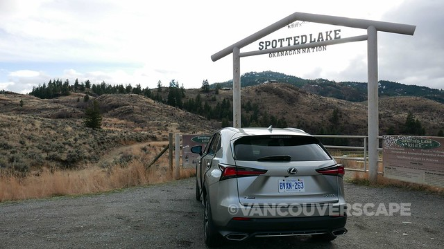 Lexus to the Okanagan-1