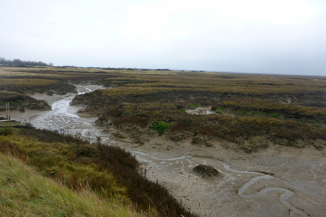 Copt Hall Marshes