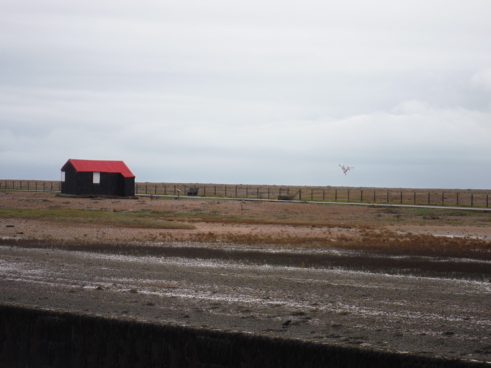 Shed in Rye Harbour Nature Reserve SWC 154 - Rye to Dungeness and Lydd-on-Sea or Lydd or Circular