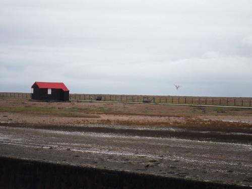 Shed in Rye Harbour Nature Reserve