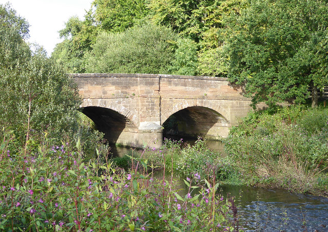 Otterton Bridge with Himalyan Balsam
