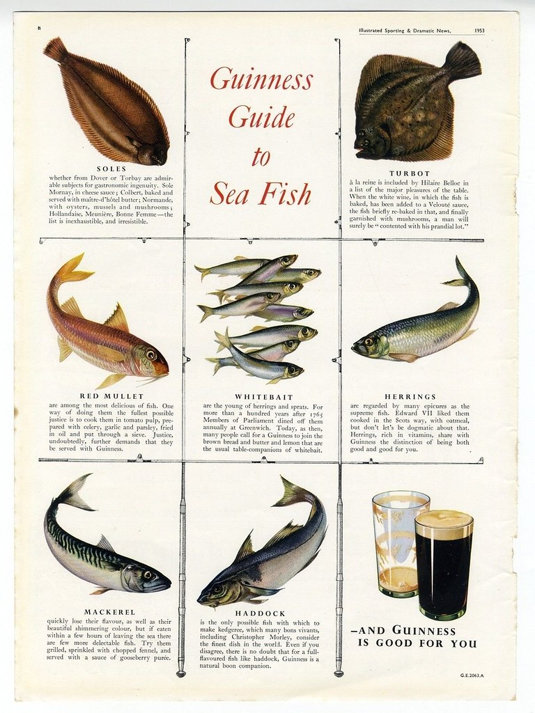 Guinness-1953-guide-to-sea-fish