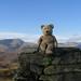 Caesar on the summit