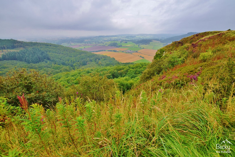 North York Moors National Park - Sutton Bank walk