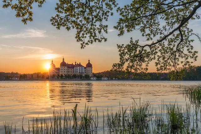 Evening at Castle Moritzburg
