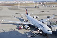 エアバスA330-300 Airbus A330-300