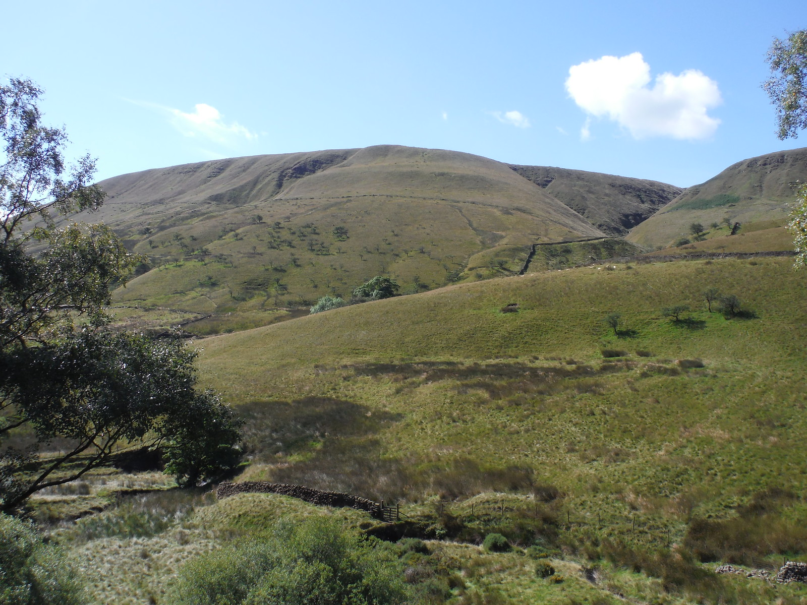 Grain Clough and Horsehill Tor SWC Walk 303 - Edale Circular (via Kinder Scout and Mam Tor)