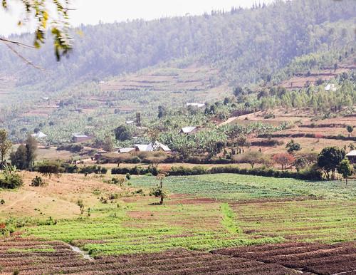 august ruanda paysage landscape road nature kabuga easternprovince rwanda rw