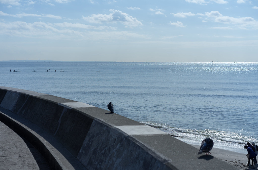 syonan coast