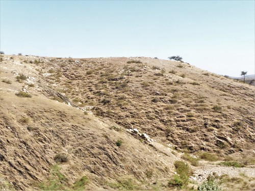i-Mount Abu-udaipur (40)