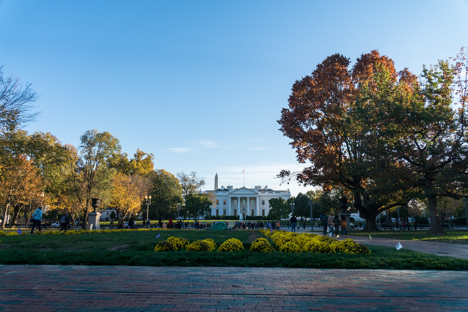 20171110_WashingtonDC_8